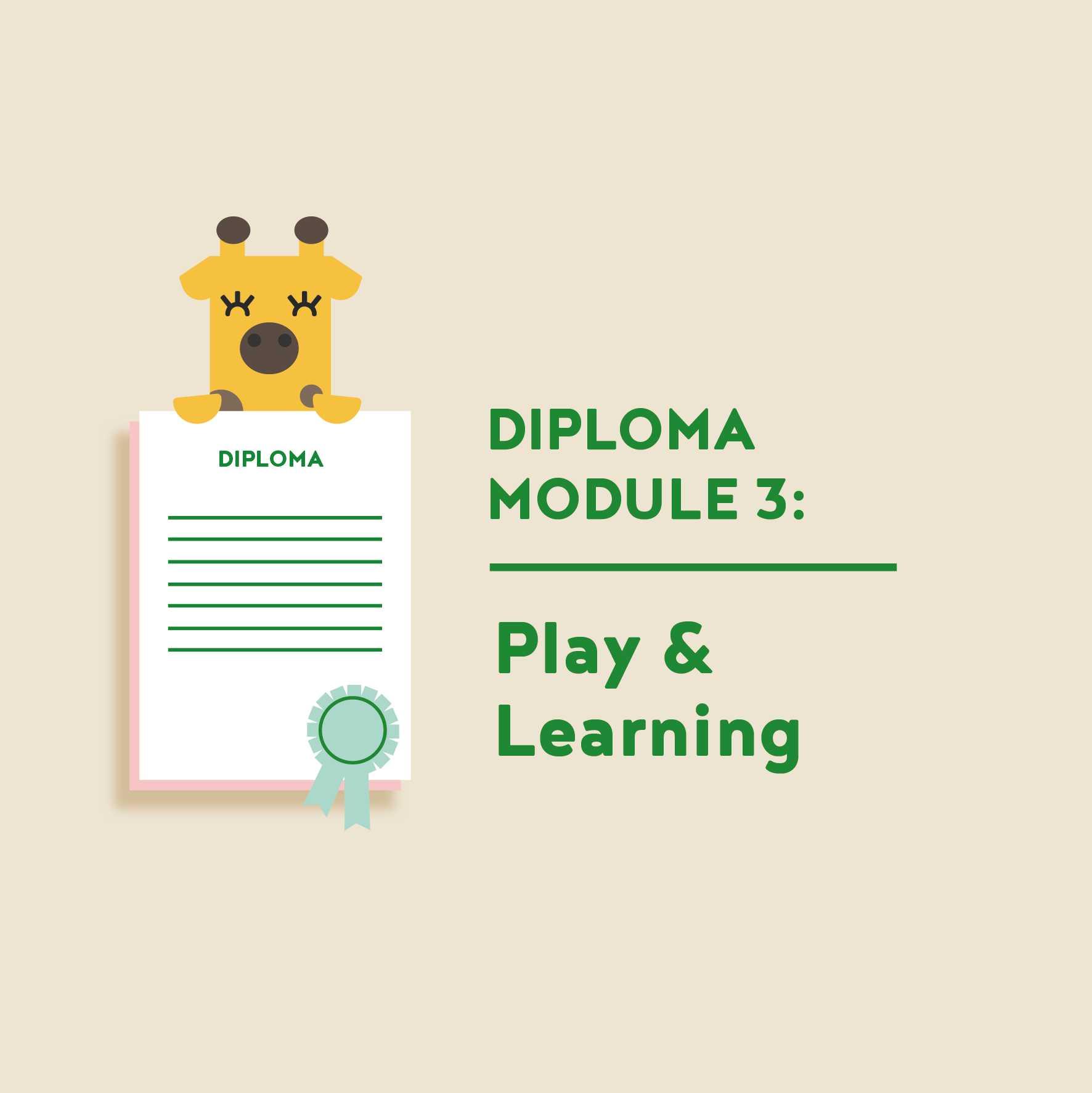 Teacher Diploma Module 3