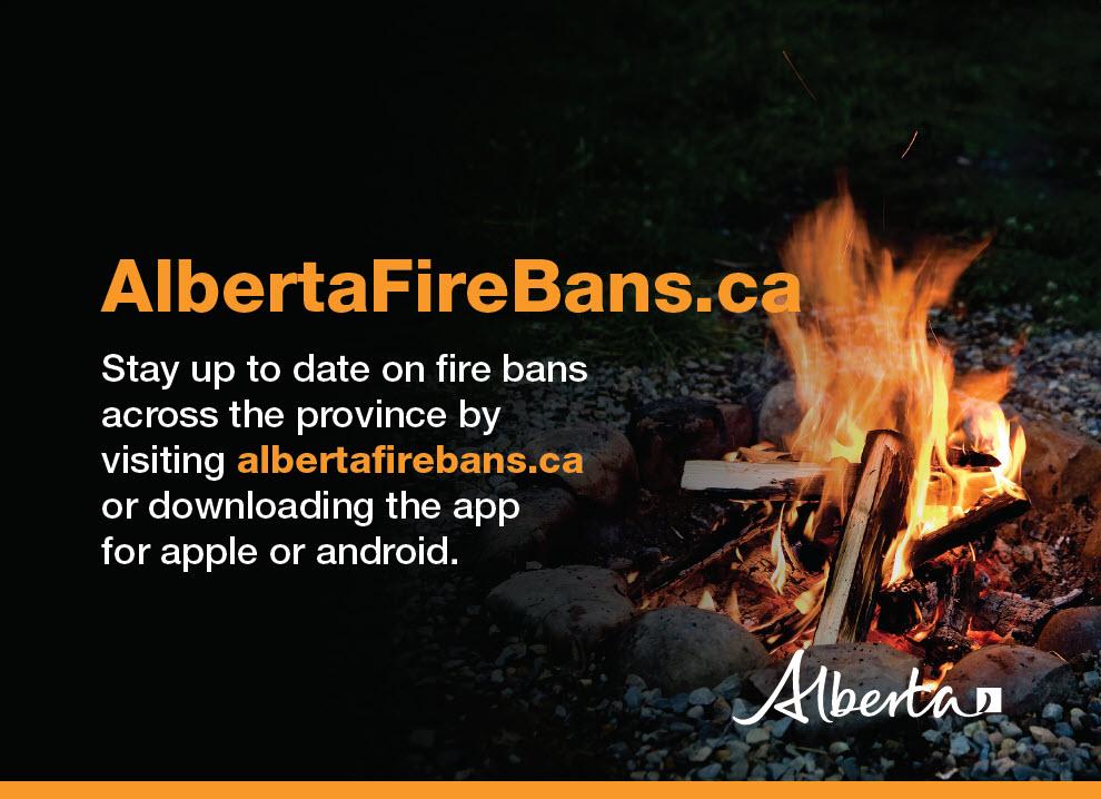 Firebans Poster
