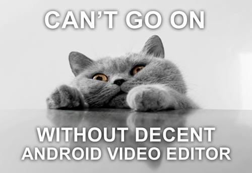 Cat Android App Meme