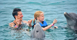 Dolphin Swim: all you can do to enjoy this fun experience.
