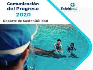 Reporte de sostenibilidad COP 2020