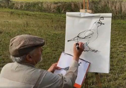 bird drawing - 1-1