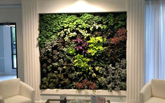 CASE STUDY | How to install your indoor greenwall