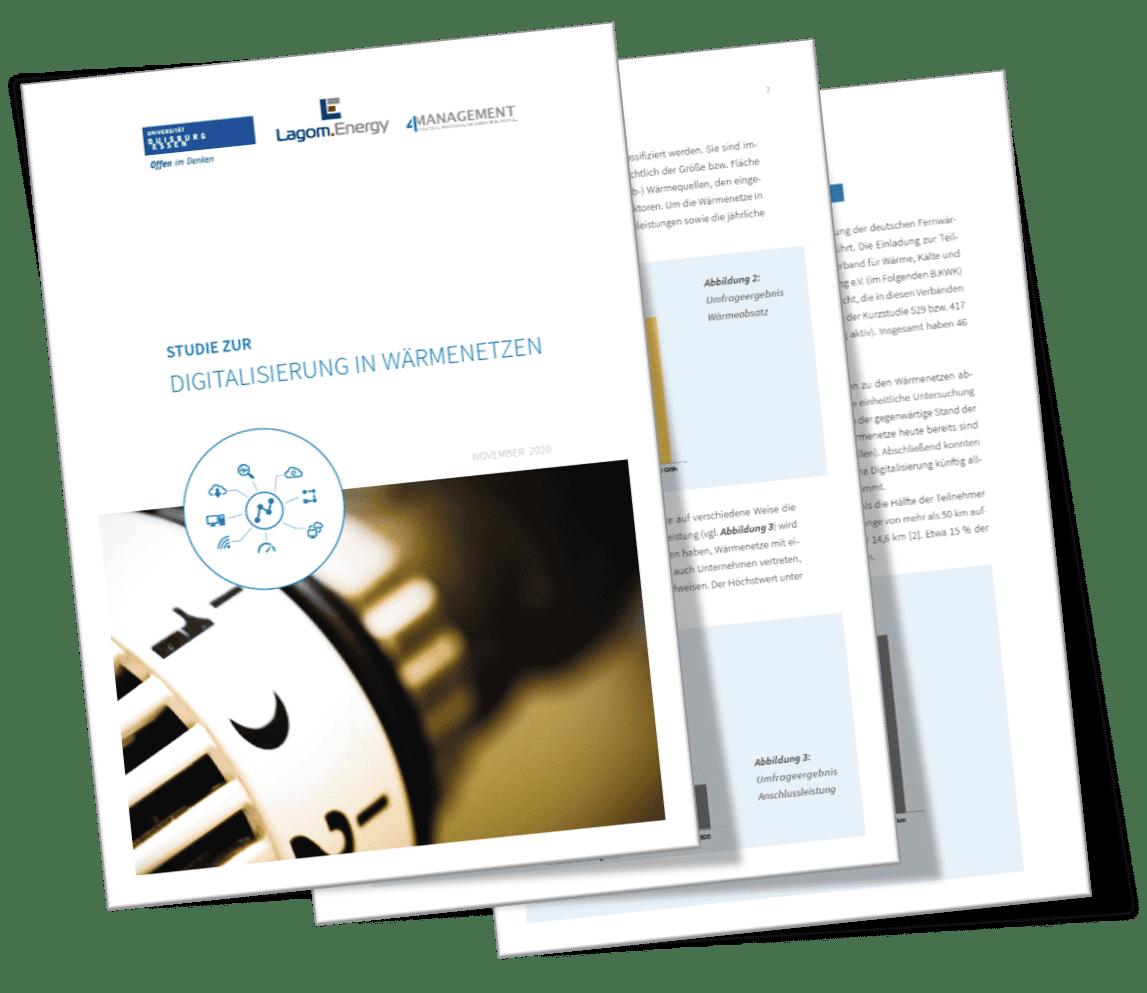 Cover Digitalisierung Wärmenetze