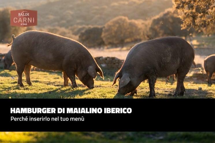 Hamburger di maialino iberico: perché inserirlo nel tuo menù