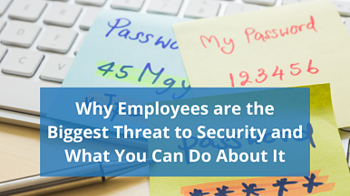 Why Employees are the Biggest Threat to Security... and What You Can Do About It