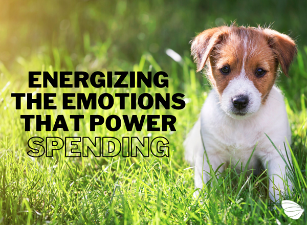 Energizing the Emotions that Power Spending