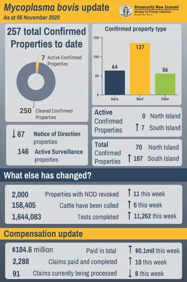 Infographic as at 6 November 2020