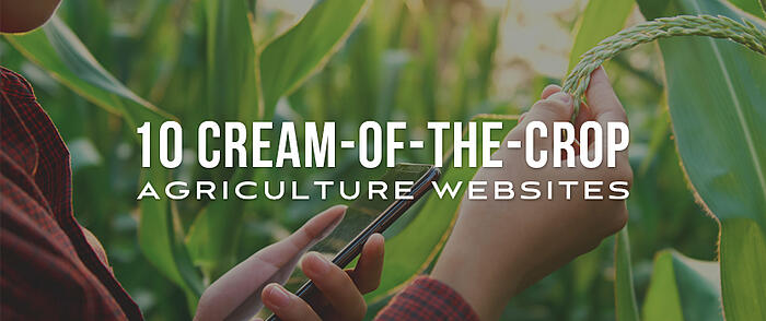 "Person holding a smartphone while examining a cornstalk and overlaid text that reads, ""10 Cream-of-the-Crop Agriculture Websites"""