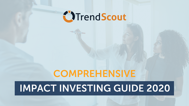 Comprehensive Impact Investing Guide 2020