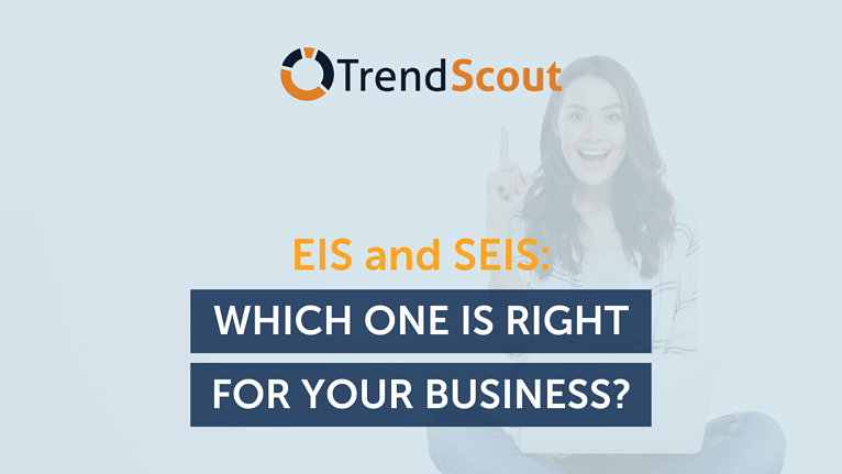 EIS and SEIS schemes featured image