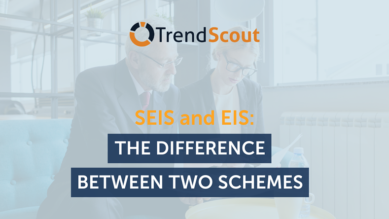 SEIS and EIS: The Differences Between Two Schemes