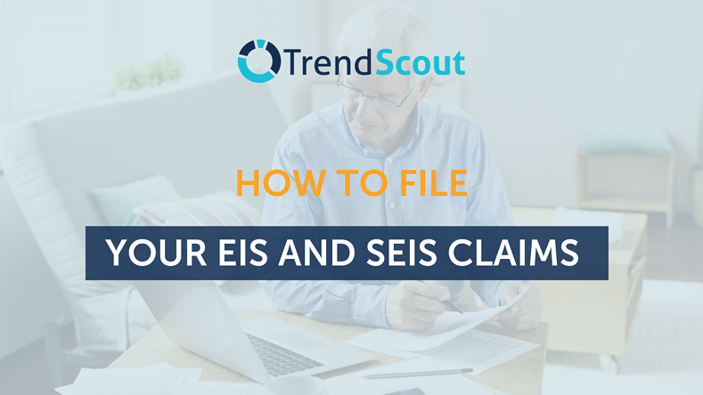 How To File Your EIS and SEIS Claims