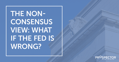 The Non-Consensus View: What if the Fed is Wrong?