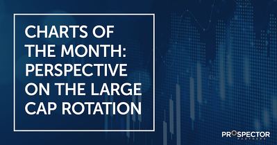 Charts of the Month: Perspective on the Large Cap Rotation