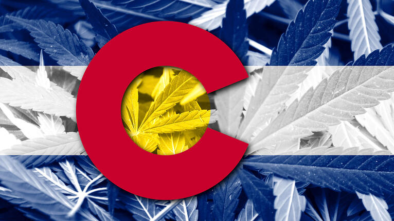Software Companies In Colorado Changing The Cannabis Industry