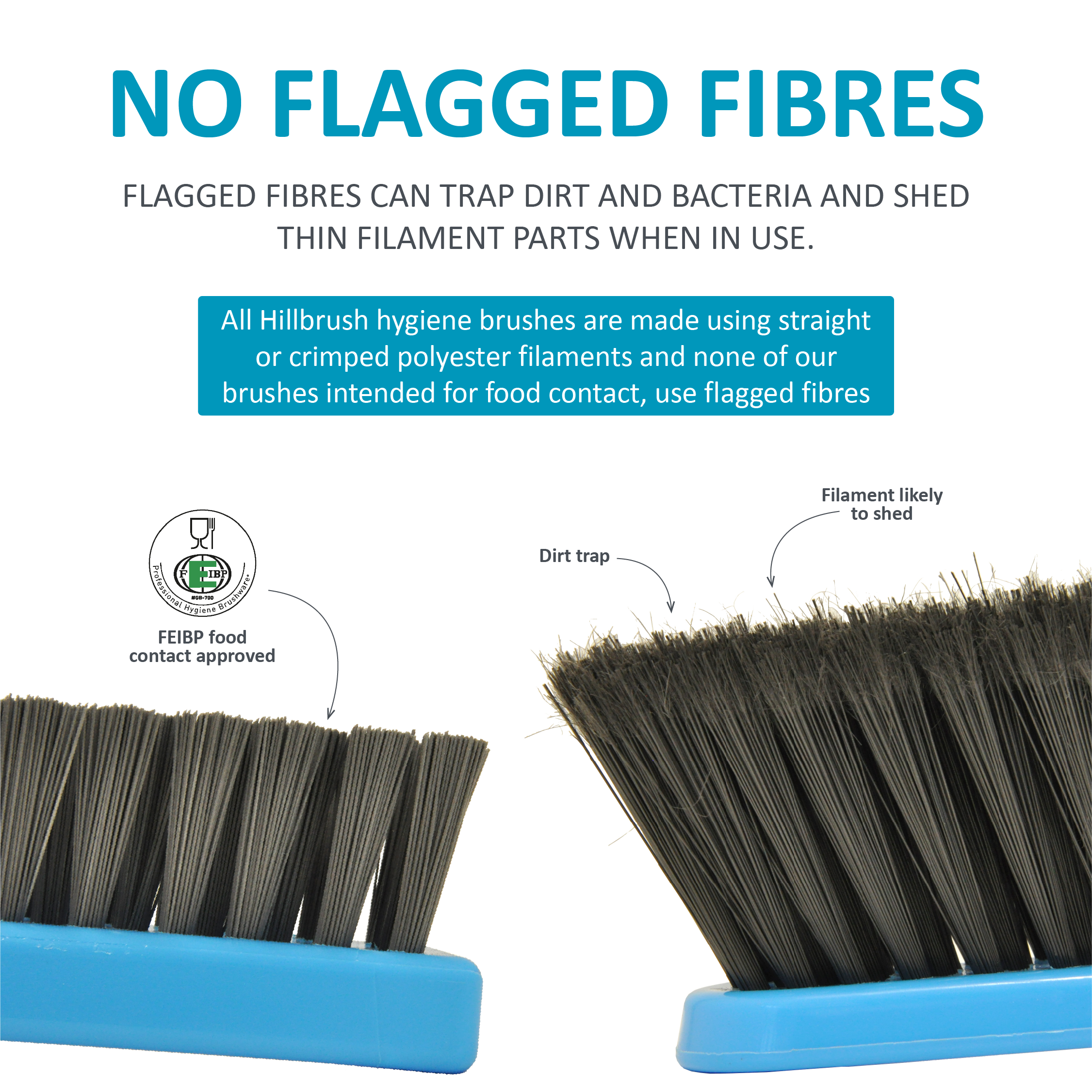 Comparison of two blue brushes, one brush with solid fibres and annotations of the FEIBP logo and suitable for food contact, one brush with flagged fibres and annotations saying dirt trap and filament likely to shed. Title says no flagged fibres and short description suggesting flagged fibres can trap bacteria.