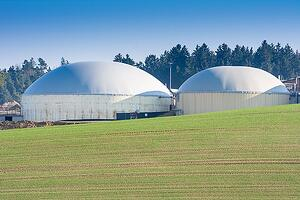 Biomasa na Slovensku? Obnoviteľný zdroj energie s veľkým potenciálom.