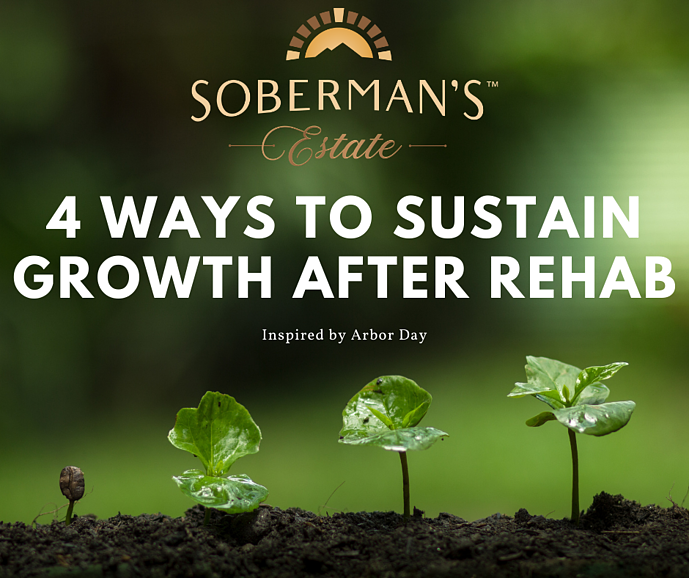 4 Ways to Sustain Growth in Addiction Recovery, Inspired by Arbor Day