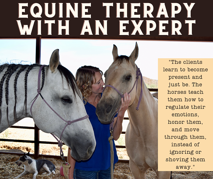 Equine Therapy with an Expert
