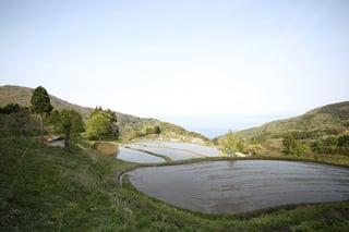 【前浜地区】岩首昇竜棚田 岩首地区の標高350mを超える山間に広がる