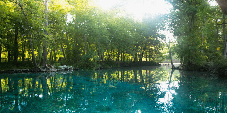 12 Best Springs & Rivers Near Gainesville