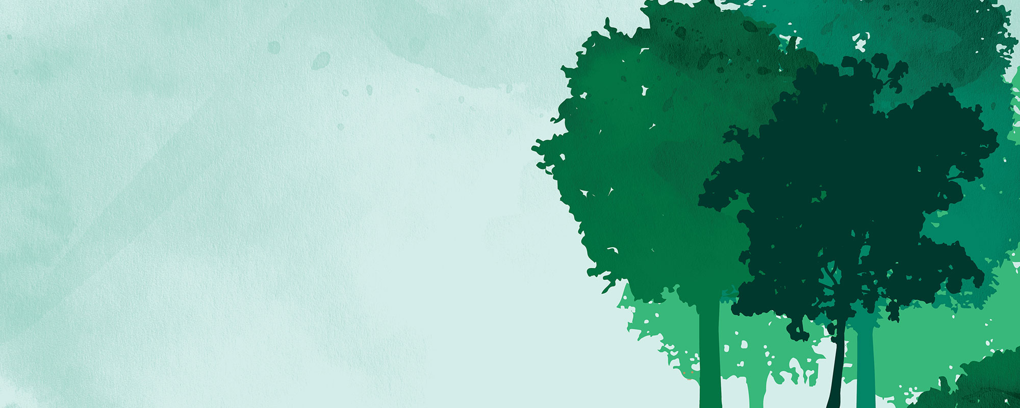 Puut, kuvituskuva.