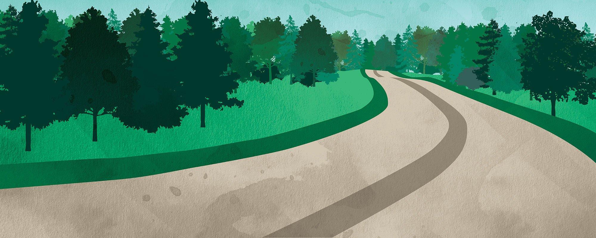 Tie ja metsä, kuvituskuva.