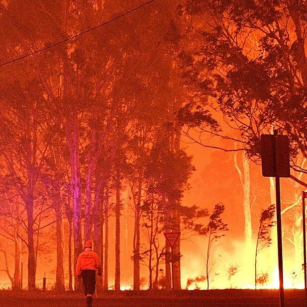 Mallacoota bushfire evacuation showed value of Cradlepoint pop-up network