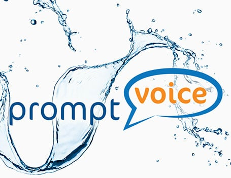 Announcing Our New Partnership With PromptVoice!