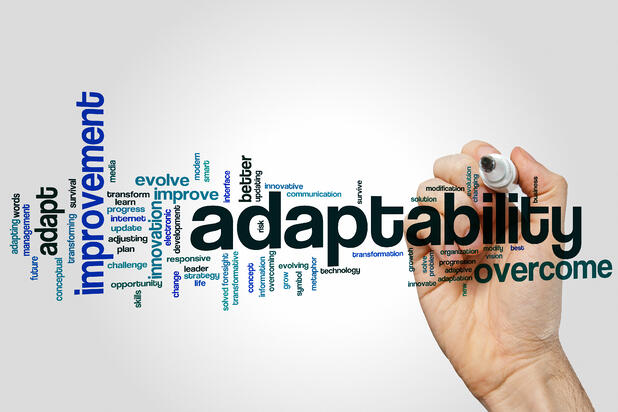 Adaptability and Commitment