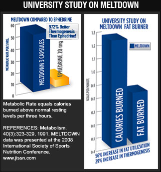 University Study on Meltdown