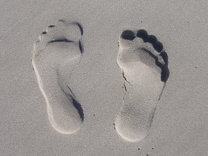 What is Your Carbon Footprint and How to Reduce It