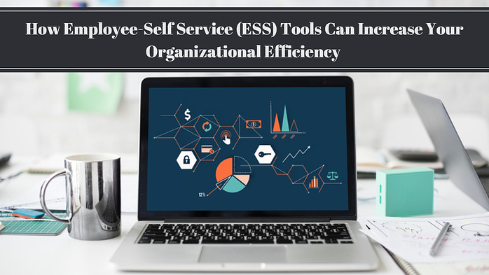 How ESS Tools Can Increase Your Organizational Efficiency