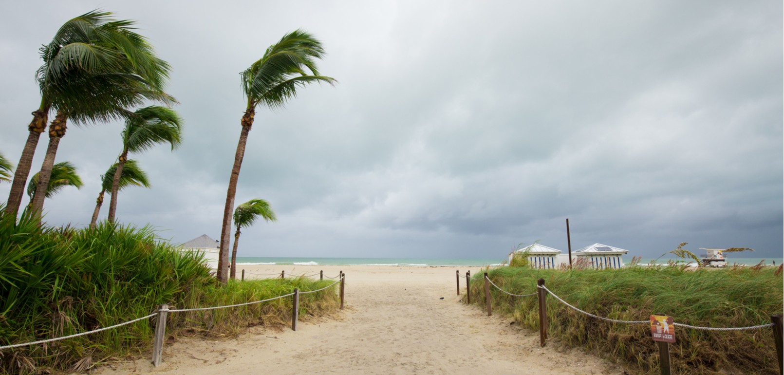 Hurricane preparedness for protecting your business IT