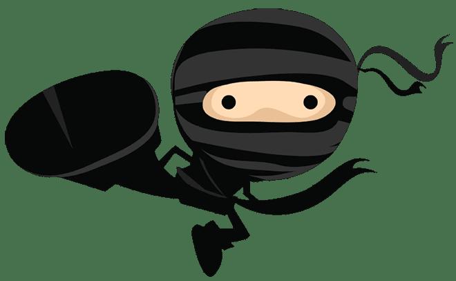ninja 1 (2)