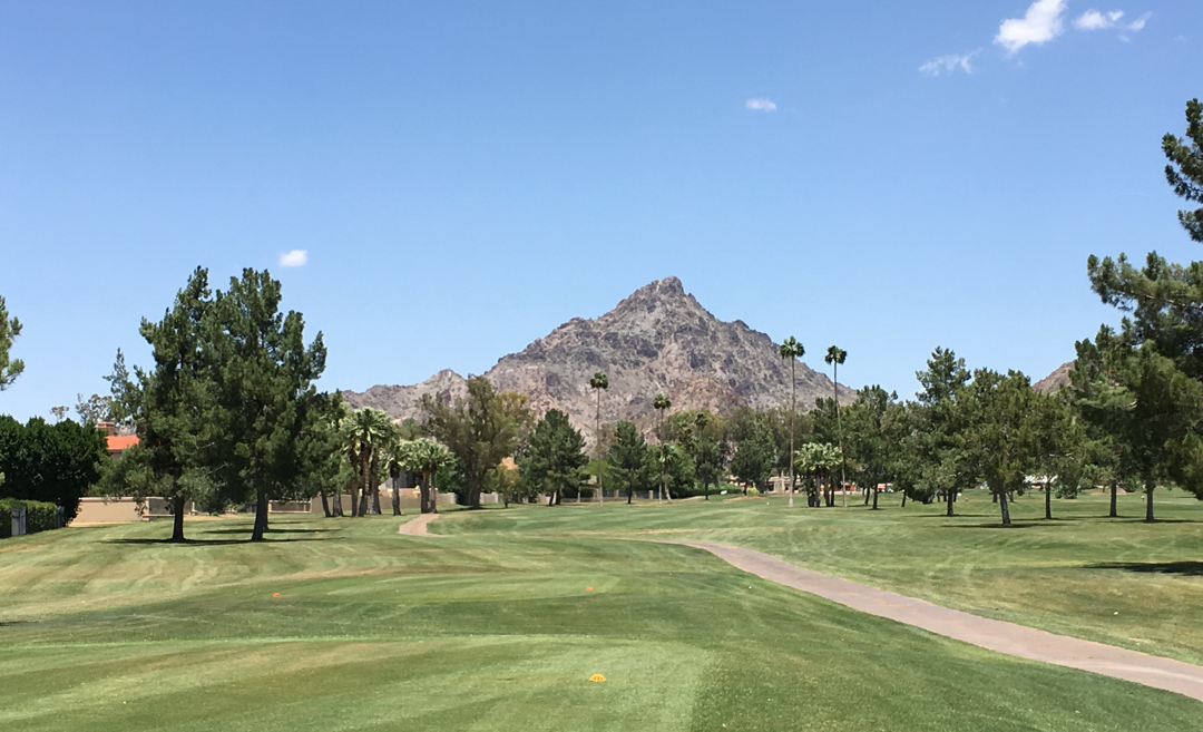 Here are 13 reasons why living in Phoenix is ideal, and consider them for your own living.