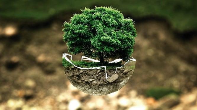 La propiedades del cartón que favorecen al medio ambiente