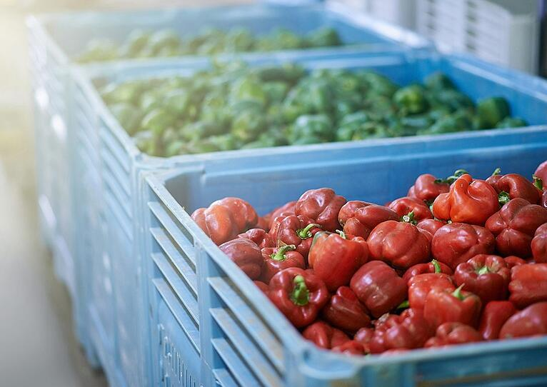 Spring Into Action: Best Practices for Restaurant Inventory