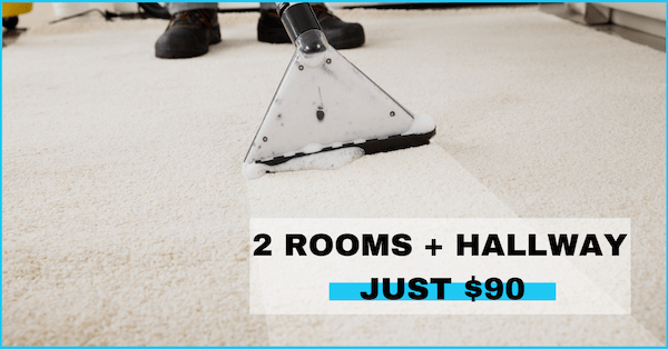 Professional carpet cleaning san diego