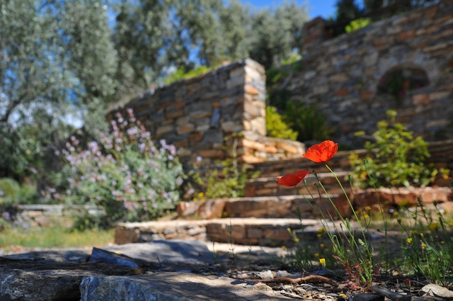 Improve your curb appeal with great landscaping