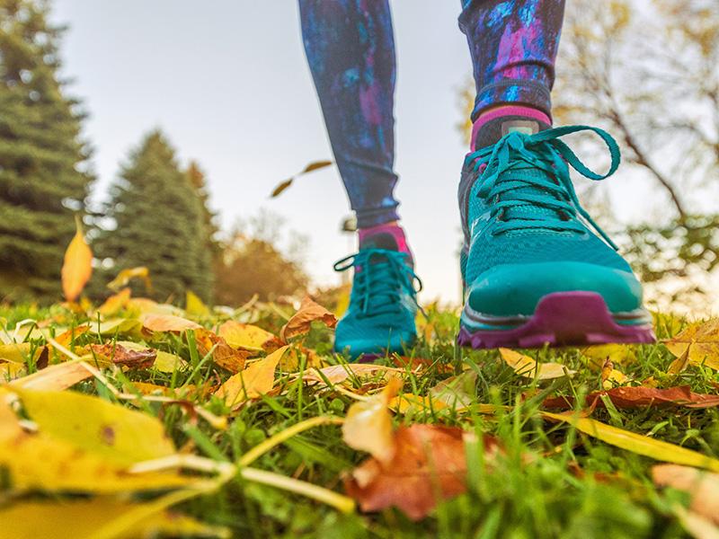 bigstock-walking-outdoor-in-autumn-natu-382437302_800