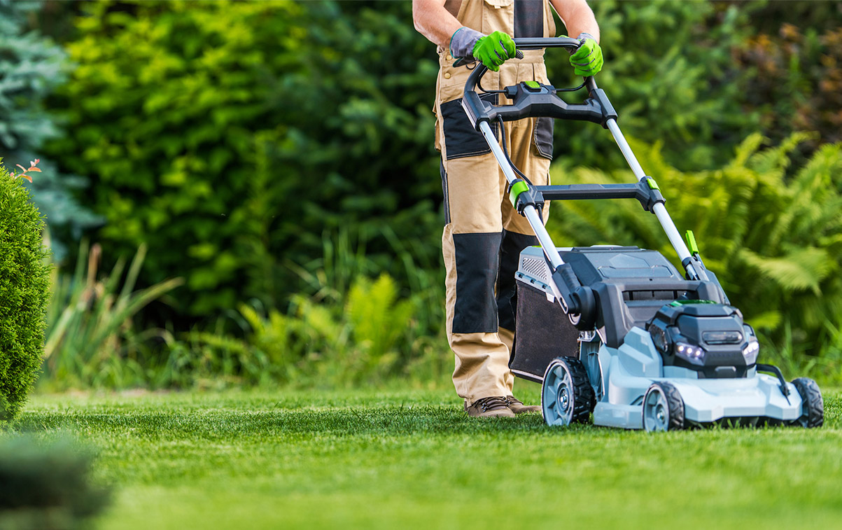 professional-lawn-care-services