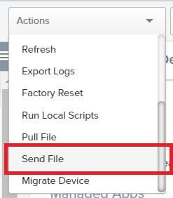 Send_File_Action