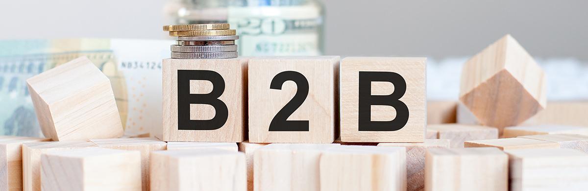 Logica B2B Purchase Journey